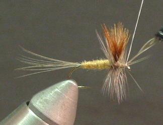 Tying a CDC Caddis - CDC Caddis Dry Fly Pattern