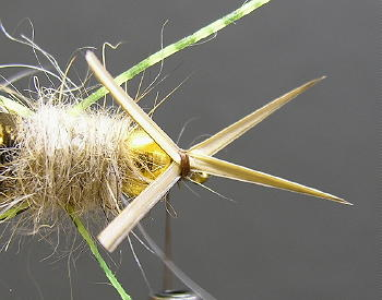 Tying The Stonefly Nymph~Western Pattern - Step by step fly tying patterns with Rob O'Reilly