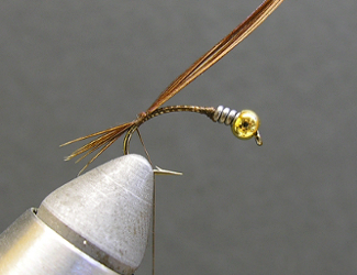 Fly Tying Evil Weevil Nymph
