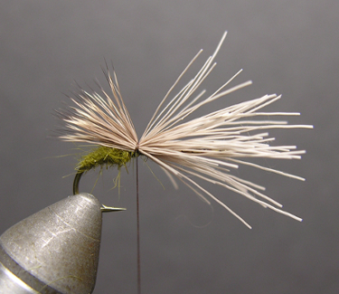 Triple Wing Caddis FLy Pattern Step By Step Tying Instructions