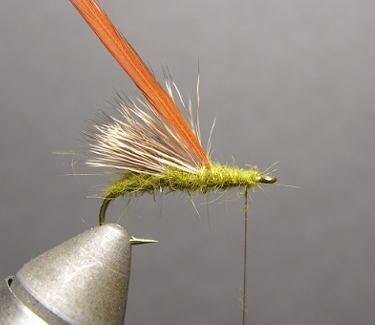 Triple Wing Caddis Step Four