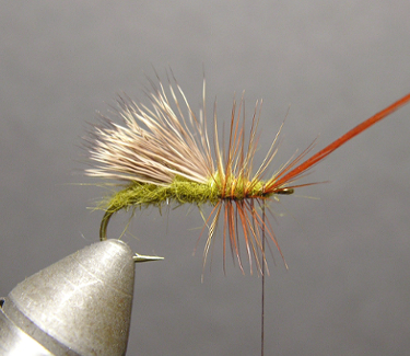 Triple Wing Caddis Step Five
