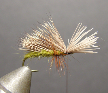 Triple Wing Caddis Step Six