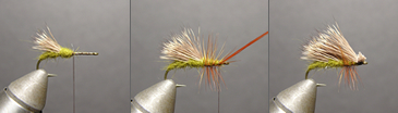 Triple Wing Caddis Step By Step Fly Patterns