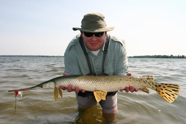 Big Ontario Gar Pike