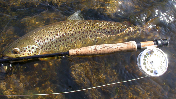 grand river fly fishing ontario   fly fishing  amp  fly tying information