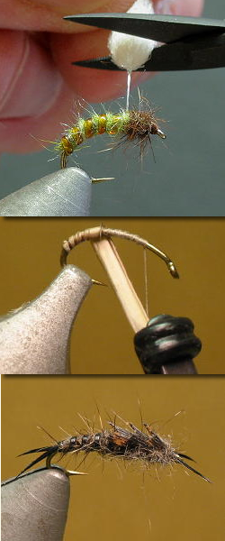 Fly Tying Paterns Step By Step