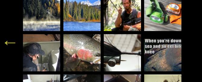 Homepage snapshot of Chronicles blog